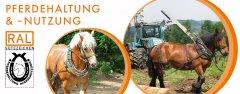 Pferdehaltung.jpg
